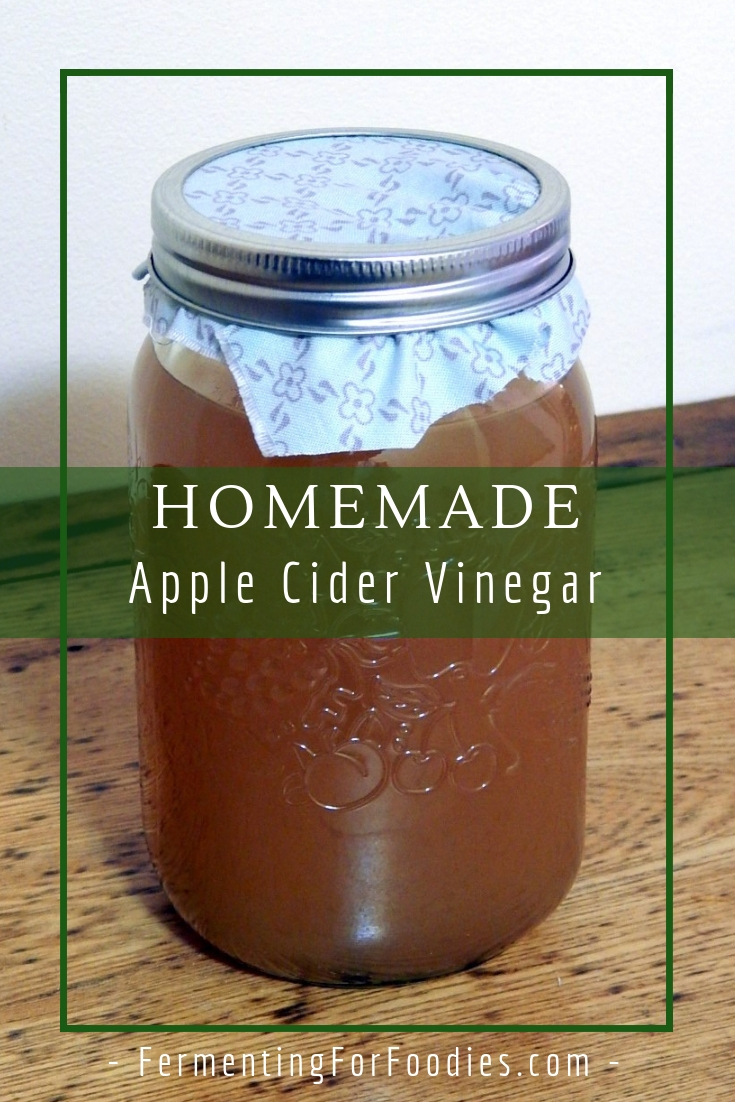 Simple apple cider vinegar - probiotic, healthy and delicious