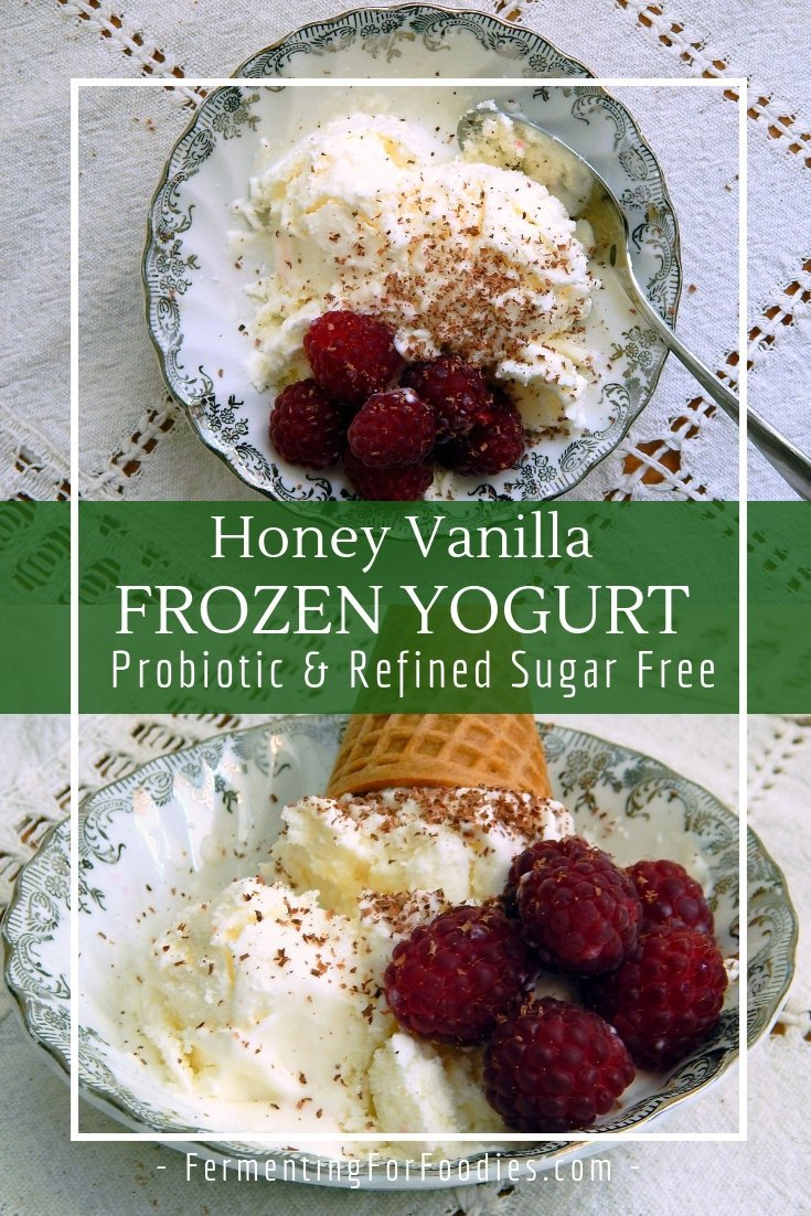 Frozen yogurt with only 3 ingredients! Simple and delicious