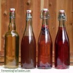 Simple, delicious and popular kombucha flavours