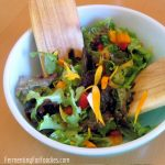 Delicious 3 Ingredient Salad Dressing