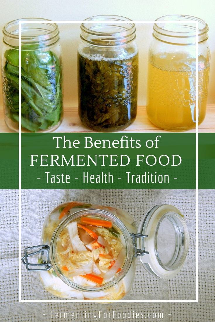 Why you need to start eating fermented foods - Join the slow food revolution
