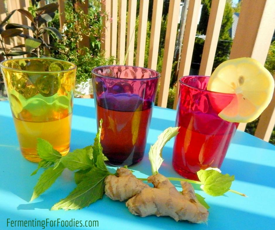 How to make chia seed kombucha, berry kombucha, fruit, Dr. Pepper flavours