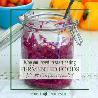 The benefits of fermented foods - health, taste and tradition