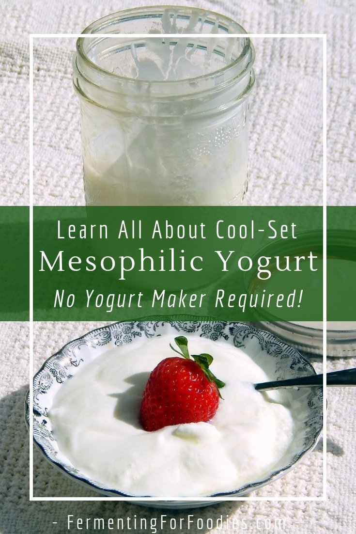 Mesophilic yogurt will cultured at room temperature