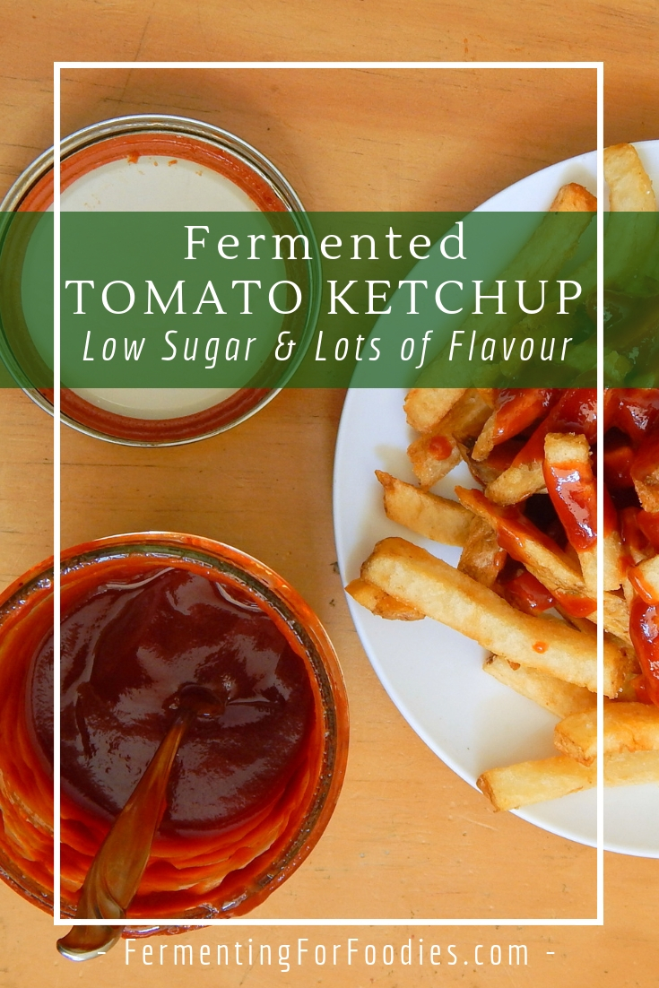 Fermented ketchup - simple and probiotic
