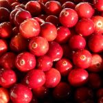 Sweet Fermented Cranberry Sauce