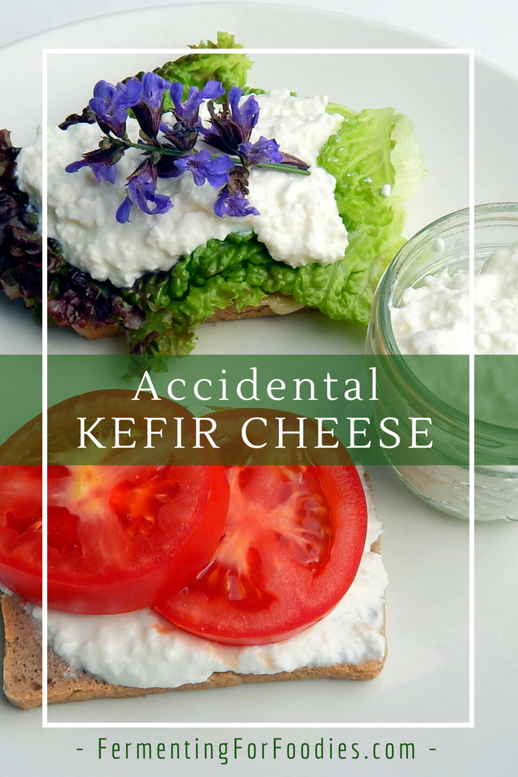 Separated milk kefir cheese - simple, delicious and probiotic