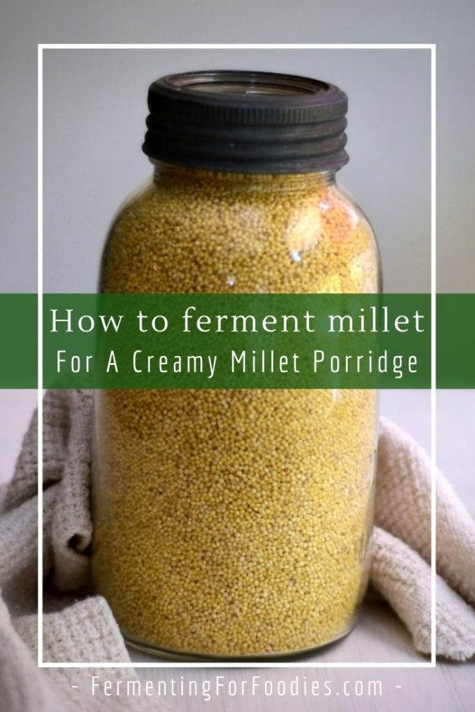 Fermented millet porridge is gluten-free, vegan and zero-waste.