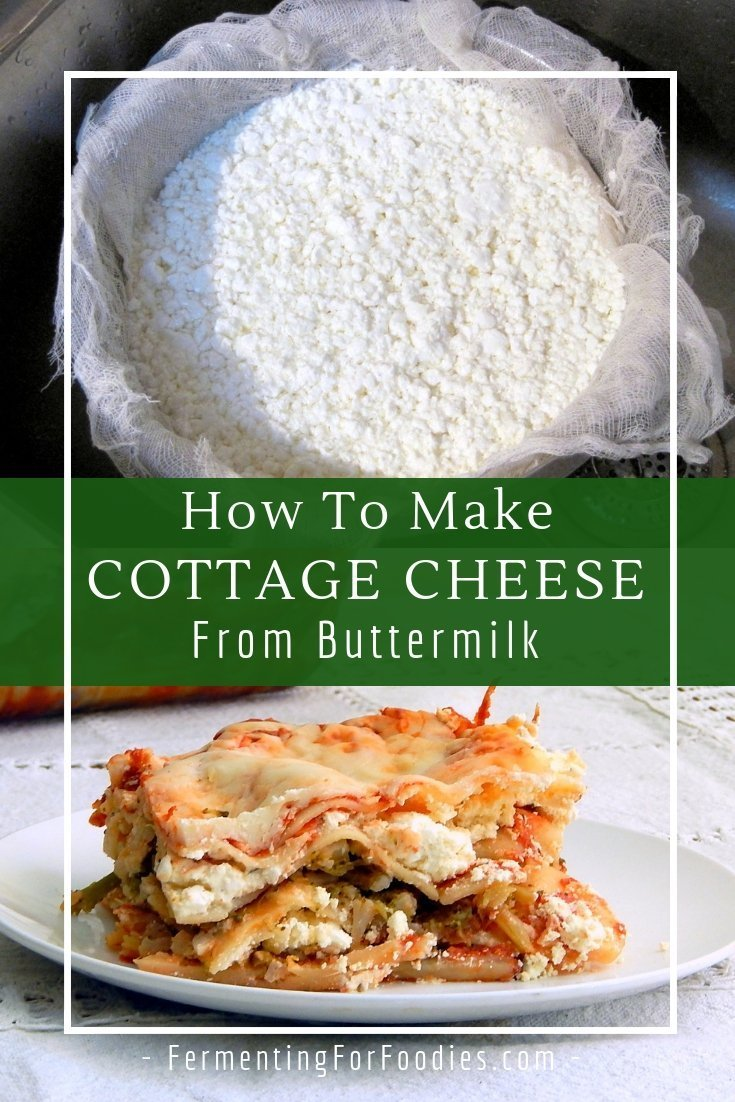 Healthy and delicious homemade cottage cheese - cultured and probiotic