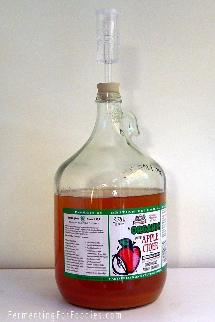 Simple homemade fruit cider from fruit juice and yeast