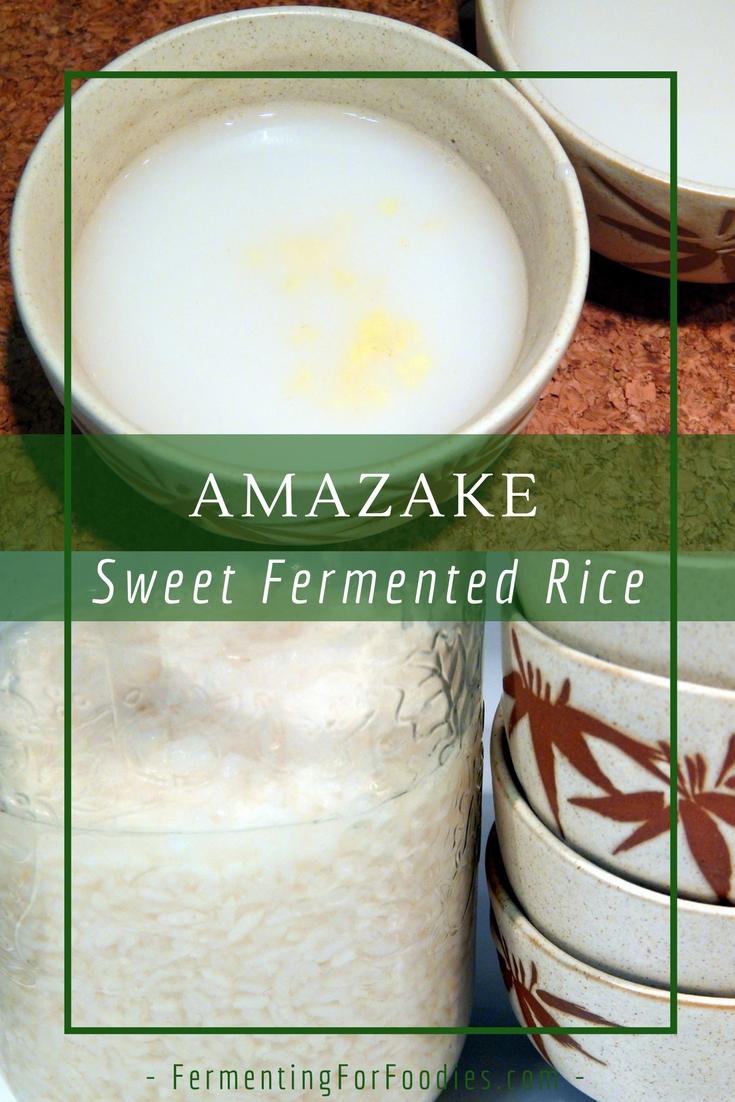 Fermented Amazake for a healthy vegan milk alternative
