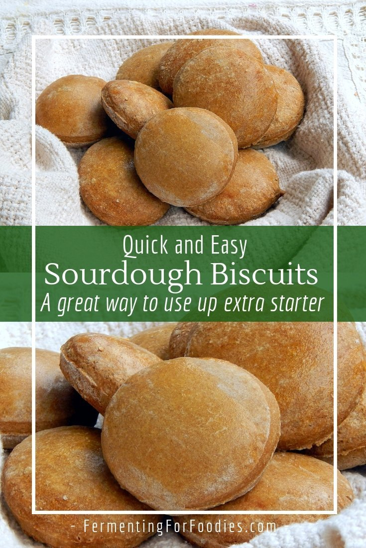 Simple sourdough biscuits are easy and quick to make