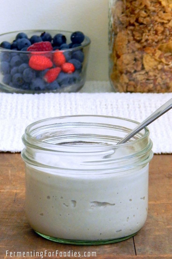 Cultured Cashew Yogurt - Probiotic and Dairy-free