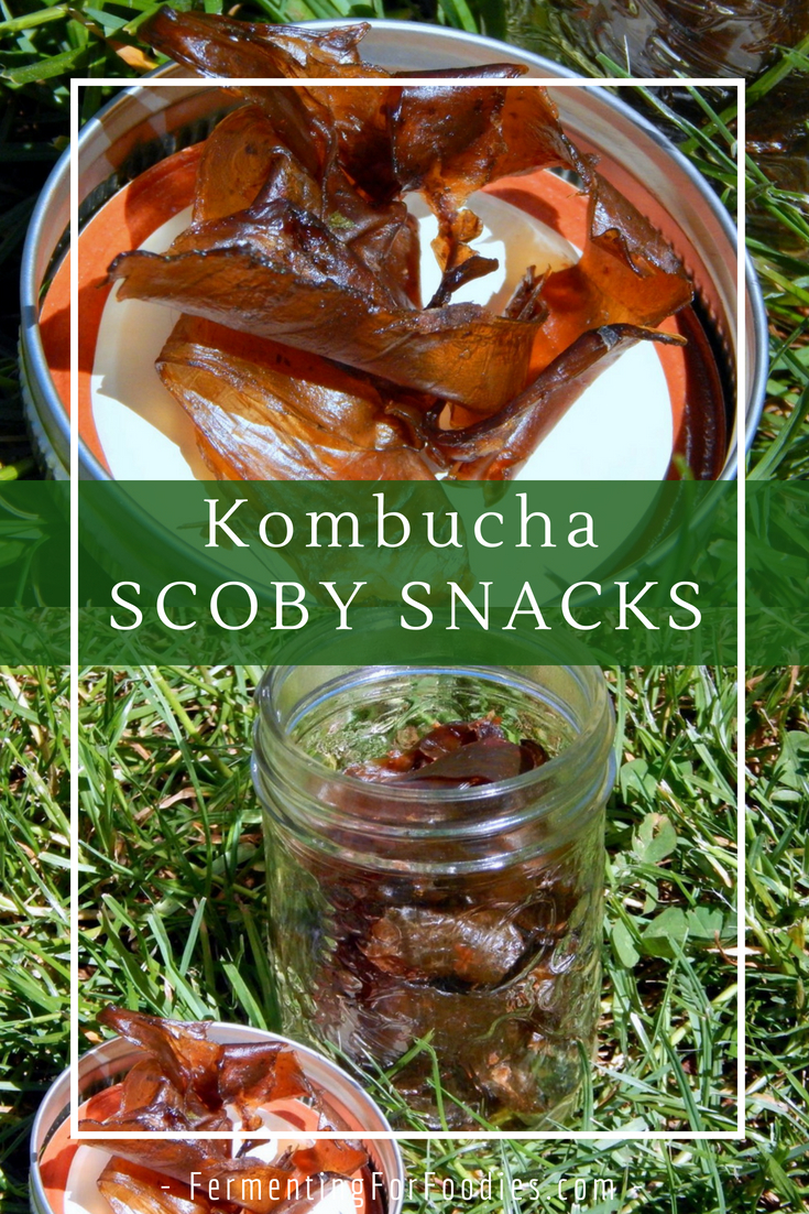 What can you do with kombucha SCOBY - Make a snack!