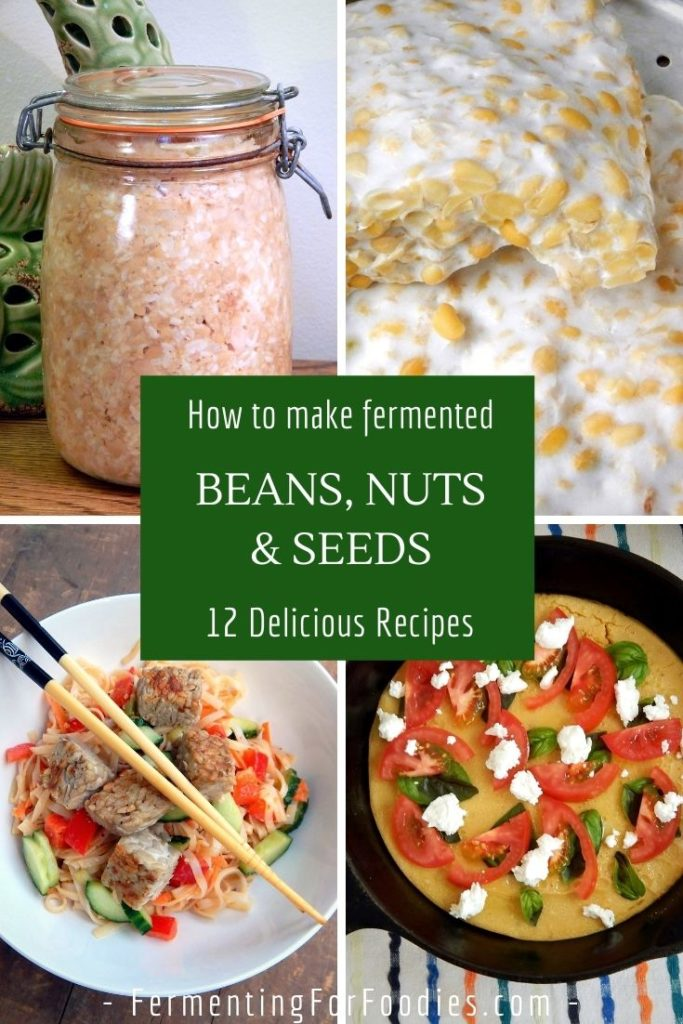 How to make fermented beans, nuts and seeds for non-meat protein