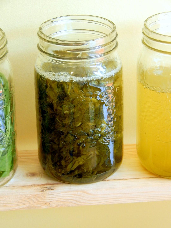 Mason jar of herbal elixir