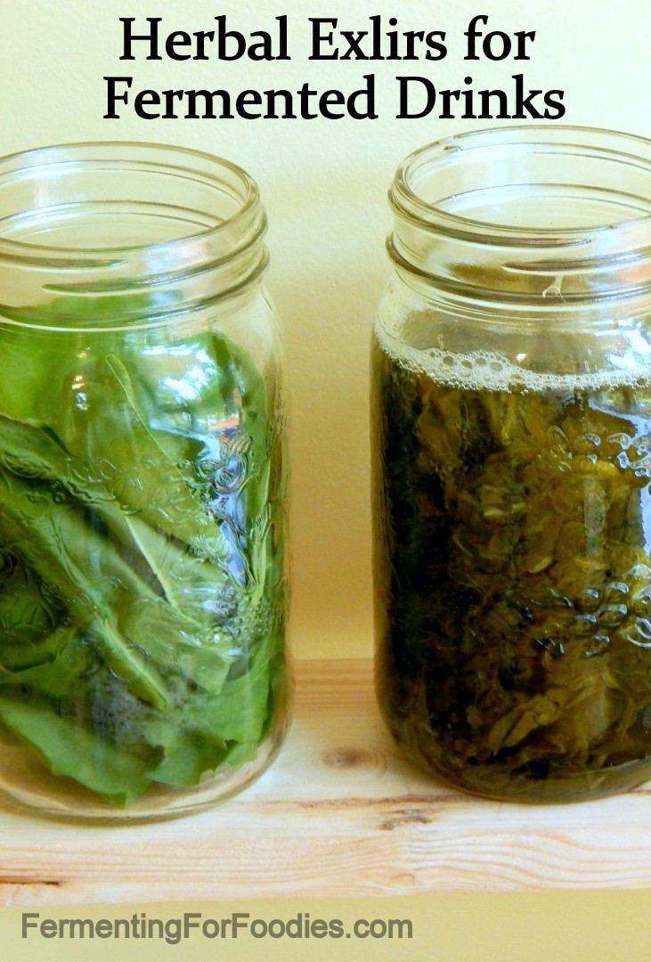 Homemade Herbal Elixers for Kombucha, kefir, jun