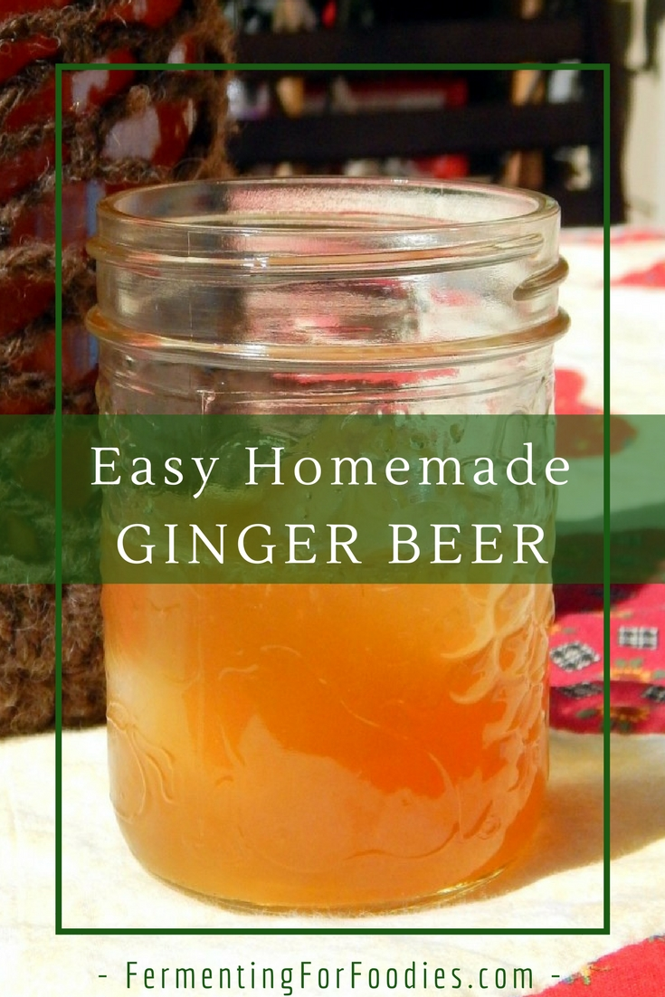 DIY ginger beer - simple and delicious