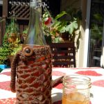 Ginger bug soda in a bottle and glass