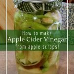 Probiotic and delicious vinegar made from apple scraps