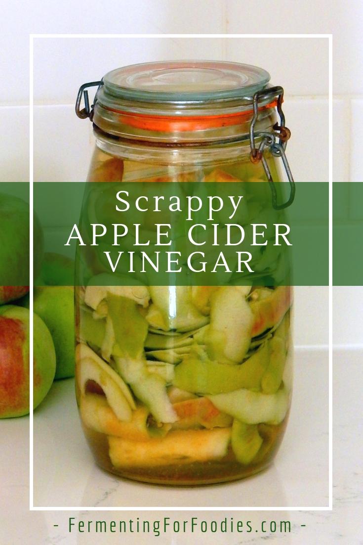 Apple cider vinegar mother on apple scraps vinegar