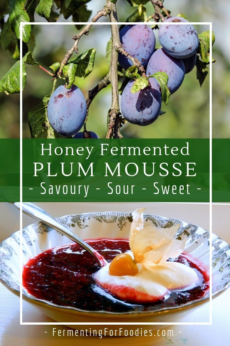 Honey fermented plum mousse - with mixed spices