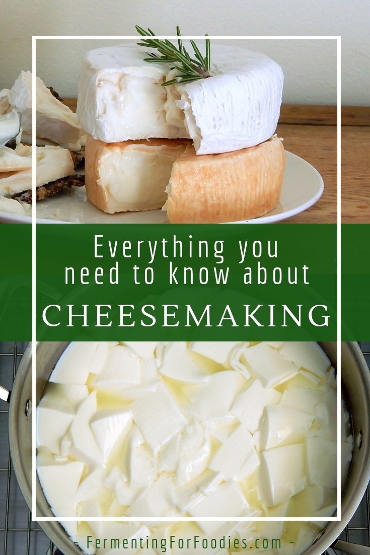 How to make cheese at home - Simple instructions, recipes, supplies and more