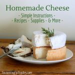 Everything you need to know about making homemade cheese