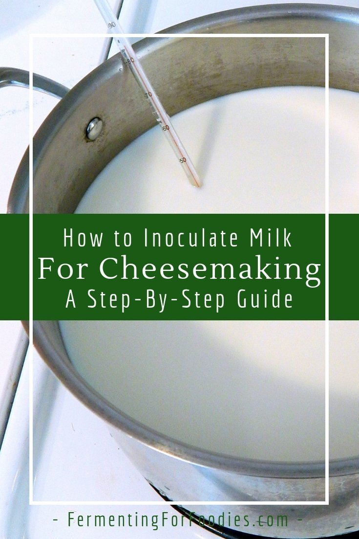 Cheesemaking inoculation with culture and rennet - mesophilic and thermophilic