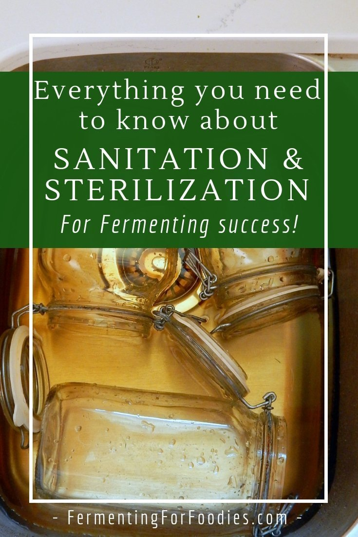 How to prevent bad bacteria in ferments with sanitation