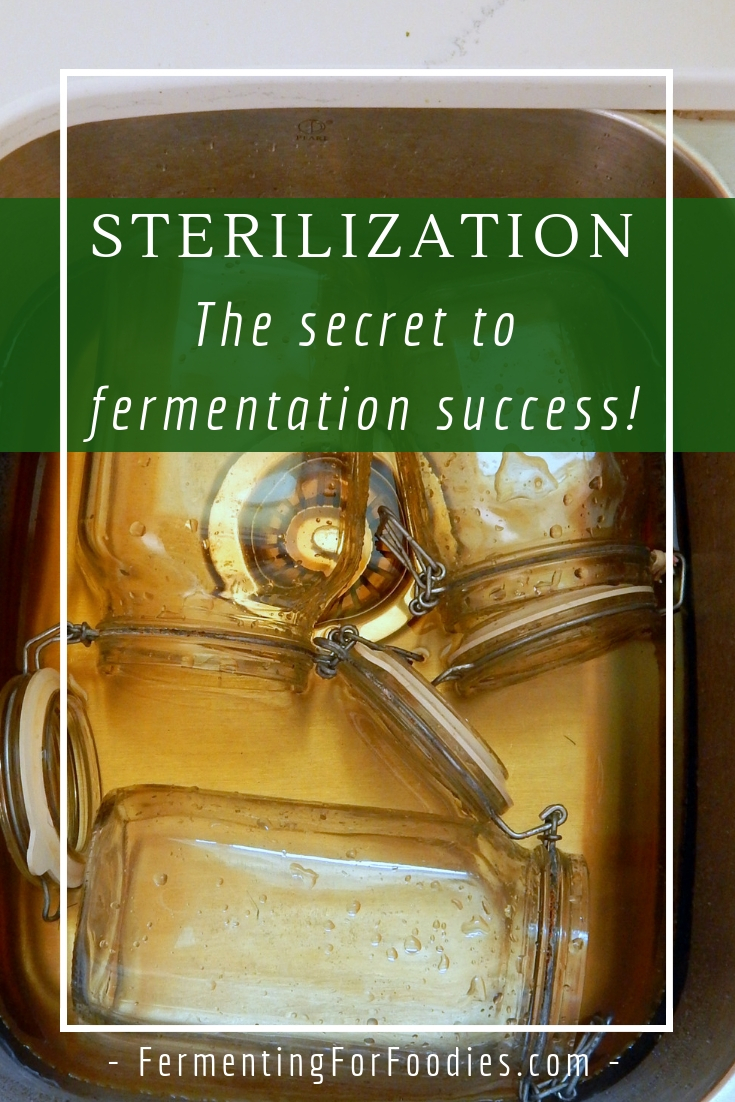 Sterilization for cheese, beer, wine, cider, sauerkraut and pickles