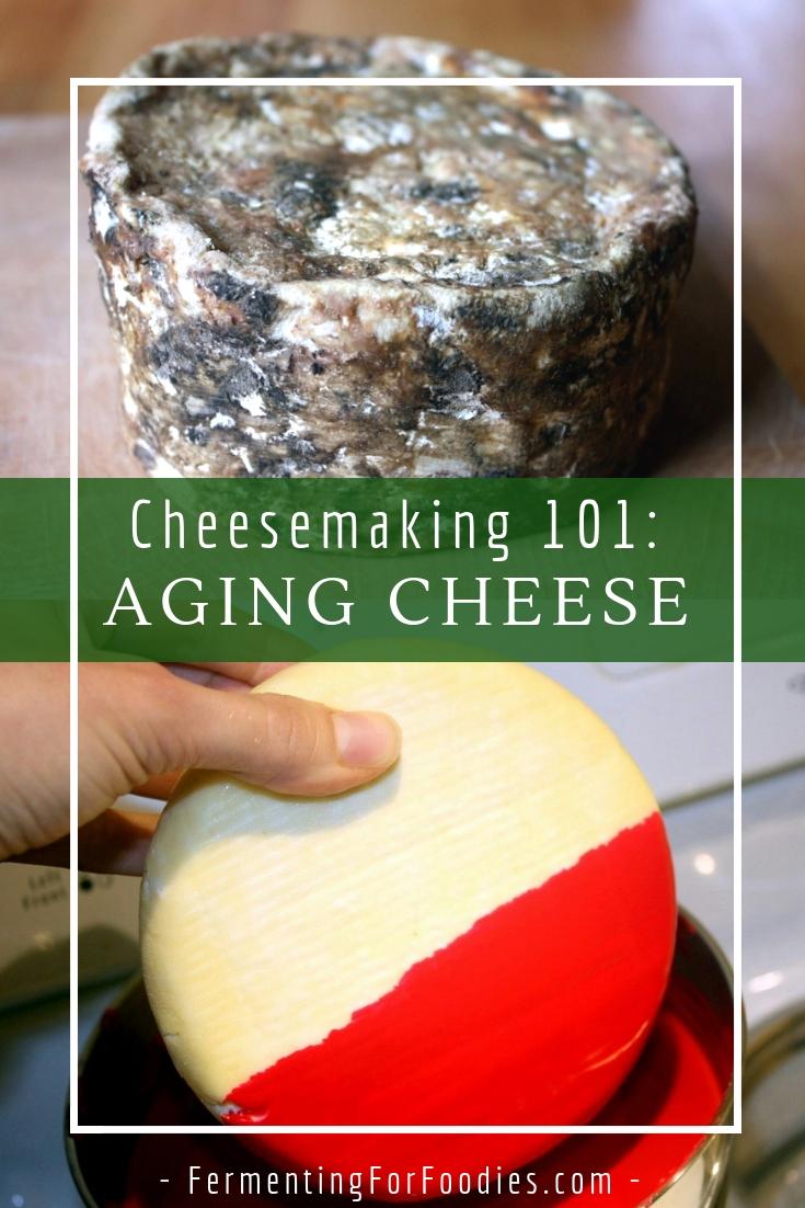 Basic homemade hard cheese - Farmhouse Cheddar