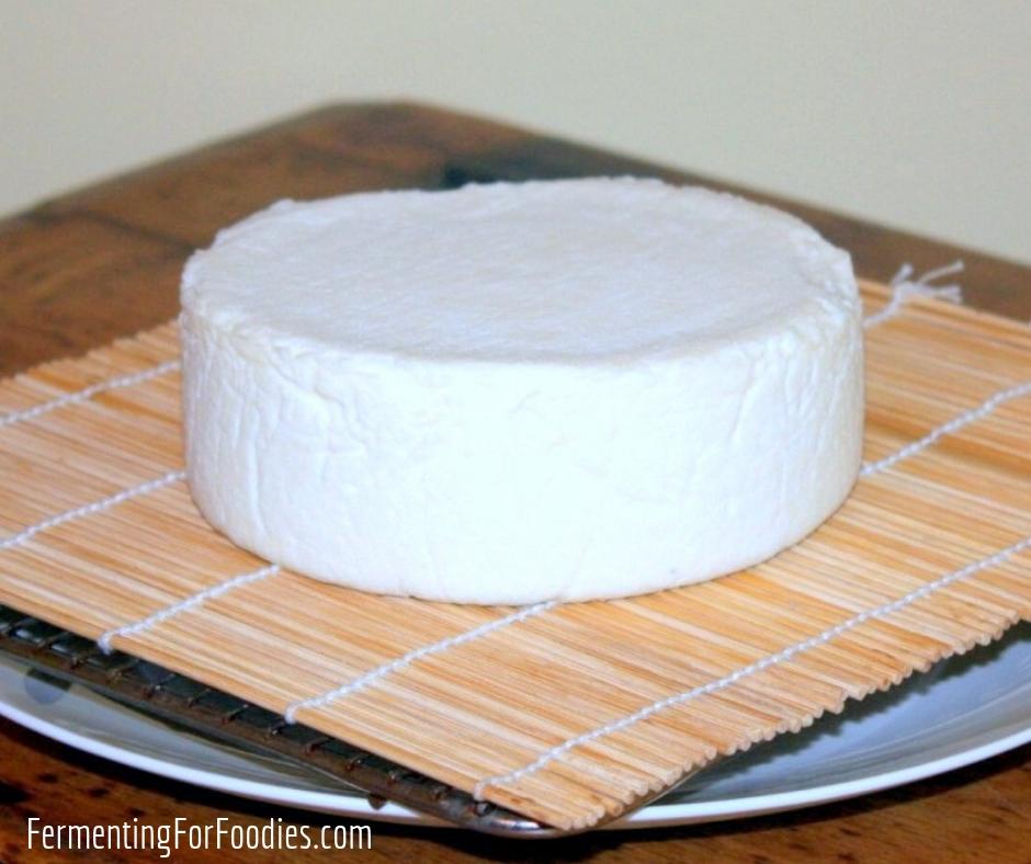 Aging hard cheese - DIY cheesemaking