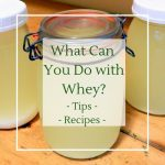 The best way to use up whey from cheesemaking and greek yogurt - recipes and ideas
