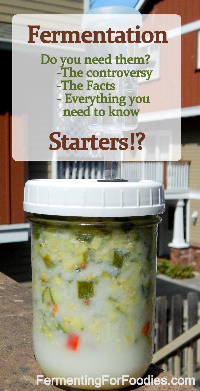 Fermenting starters: whey, kombucha and more