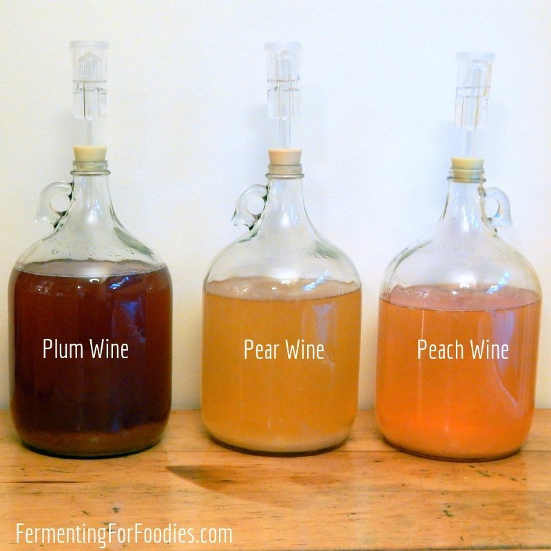 Everything you need to know to make homemade cider and wine.