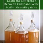 What do I need to know about making wine and cider