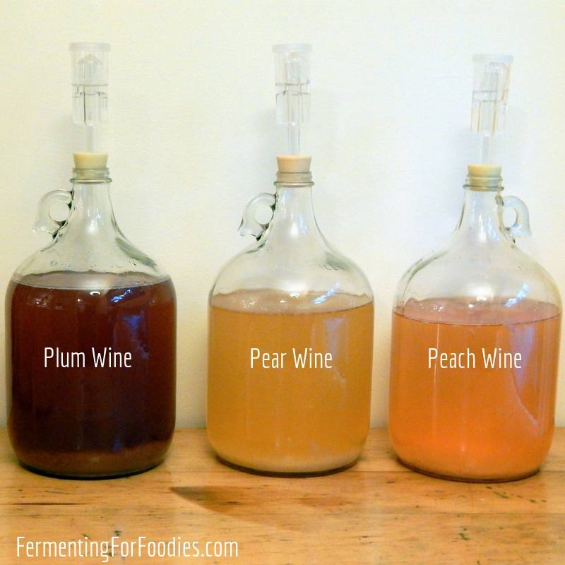How to make homemade cider and wine - everything you need to know