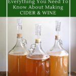 Everything you need to know about homemade wine and cider