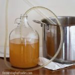 A simple guide to homemade wine and cider
