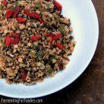 Fermented Granola: Sugar Free & Crunchy!