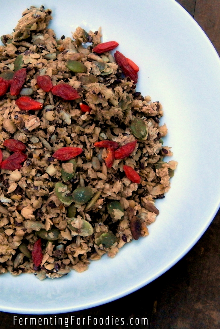 Pre-fermented granola - vegan, gluten free, sugar free, healthy