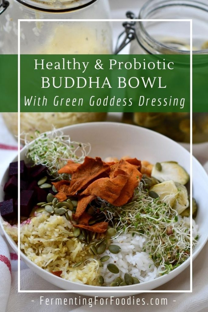 Probiotic Buddha bowls and glory bowls are the simple way to serve healthy food on short notice.