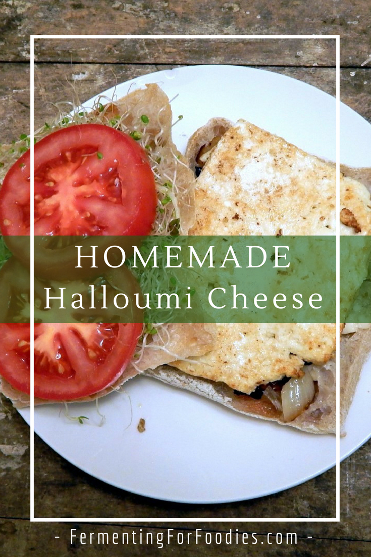 DIY Halloumi Cheese - Fresh cheese, perfect for grilling