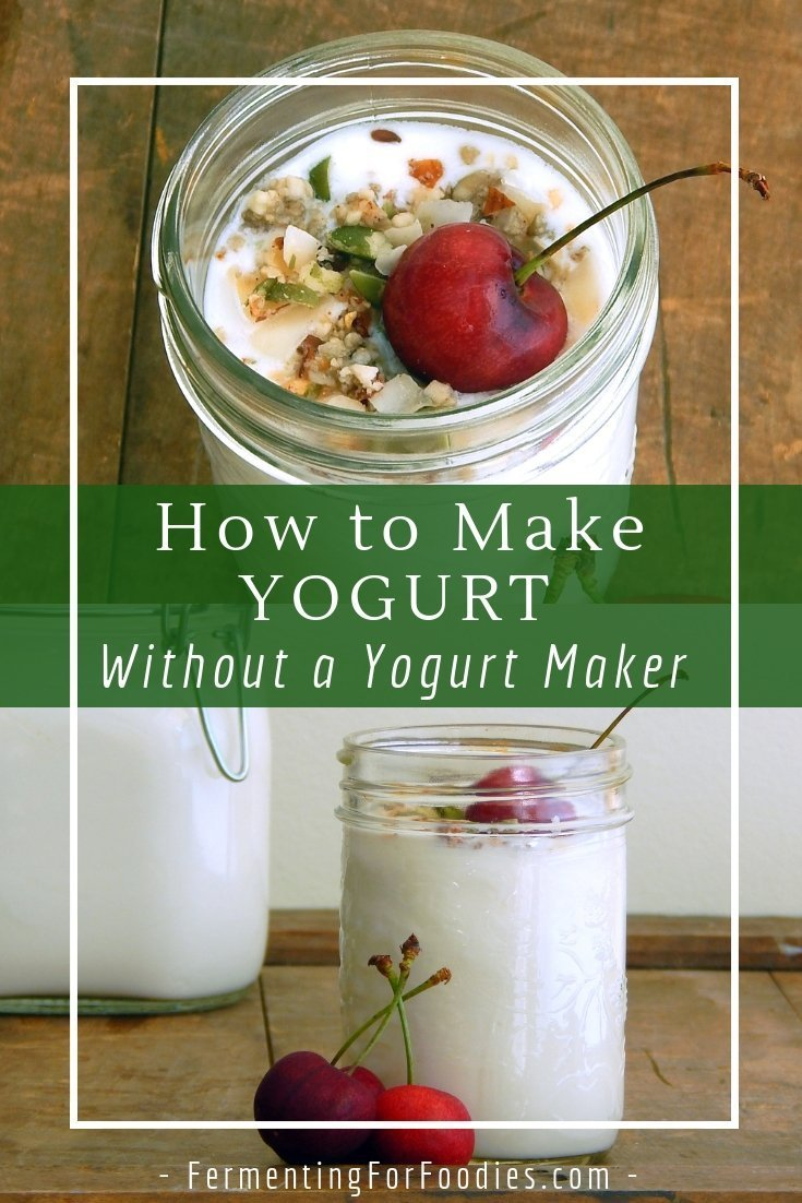 Make your own thick, creamy and probiotic yogurt.