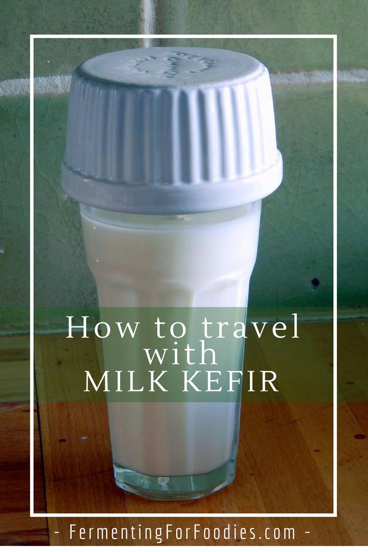 Taking milk kefir grains on holiday - vacation