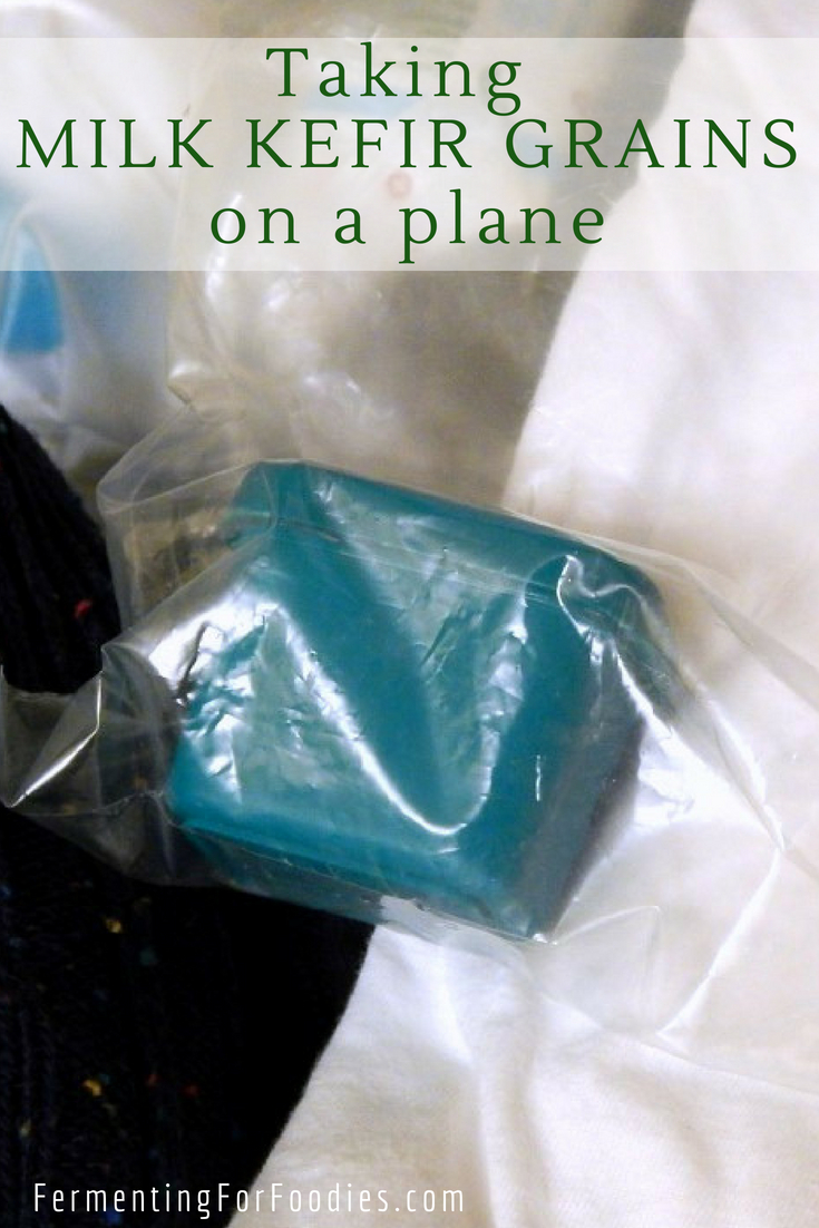 How to travel with milk kefir grains - airplane, train, car