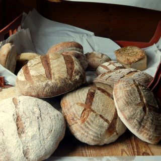 Loaves of sourdough bread.