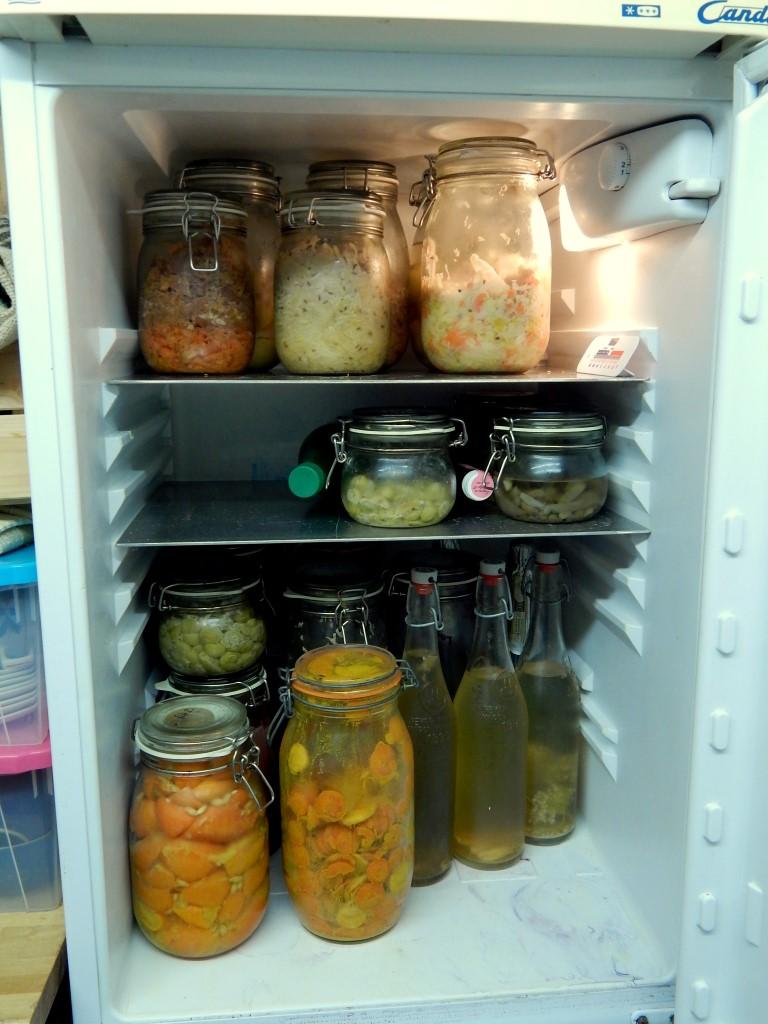 Fridge full of ferments