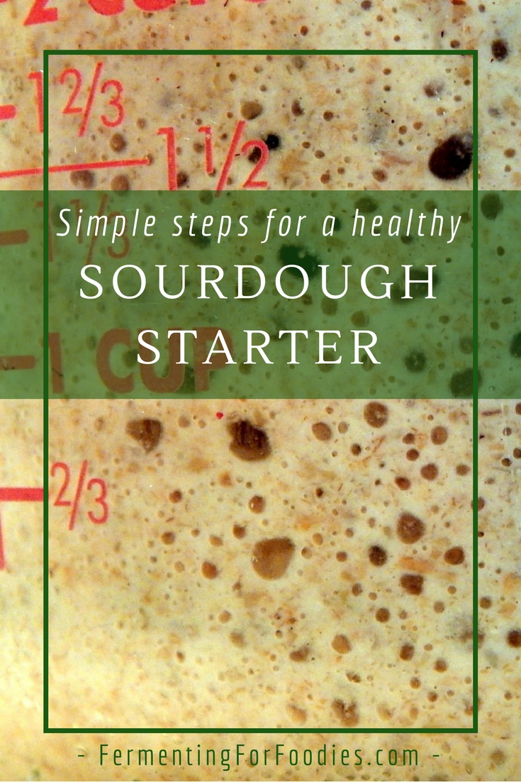 How to start, feed and take care of an active sourdough starter.